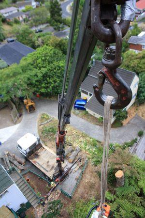 crane-demolition-arbortechnix-tree-work-auckland