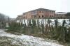 commercial-willow-pollard-environmental-management-arbortechnix