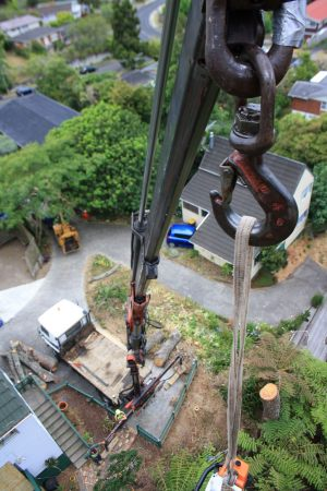 crane-demolition-arbortechnix-tree-work-auckland