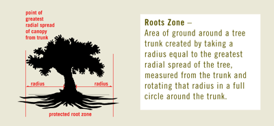 roots zone